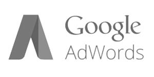 google-adwords-starhostz